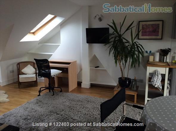 Sunny loft in lovely Edwardian house in NW London Home Rental in Greater London, England, United Kingdom 4