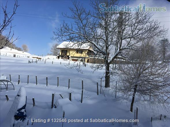 Your Sabbatical home in the Italian Ligurian  mountains. Home Rental in Urbe, Liguria, Italy 2
