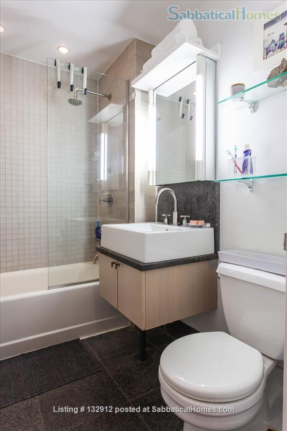 Fully Furnished Condo in Downtown NYC Home Rental in New York, New York, United States 6