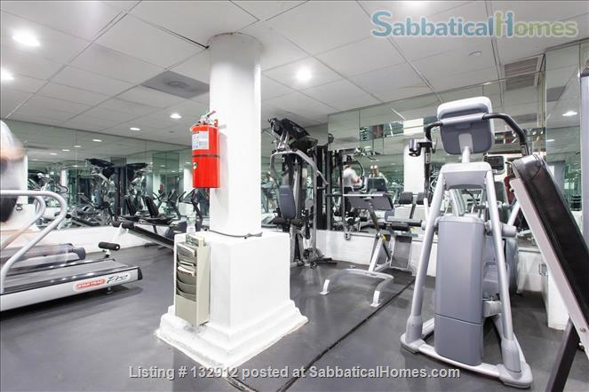 Fully Furnished Condo in Downtown NYC Home Rental in New York, New York, United States 8