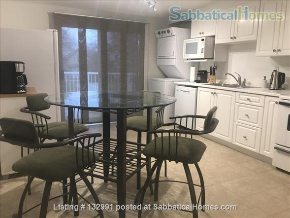 Walk to Queen's and hospitals from mature DOWNTOWN neighbourhood Home Rental in Kingston, Ontario, Canada 2