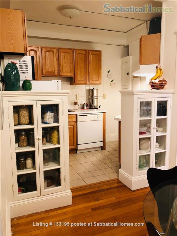 Family-Friendly Sublet Home Rental in Cambridge, Massachusetts, United States 6