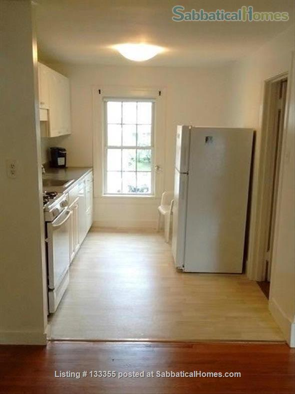 Large 1 BR, two blocks from Smith College gates Home Rental in Northampton, Massachusetts, United States 9