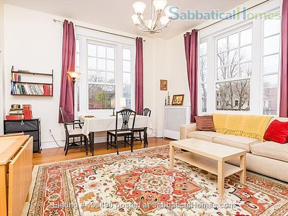 Furnished two-bedroom condo in prime location one block from Harvard campus Home Rental in Cambridge, Massachusetts, United States 1