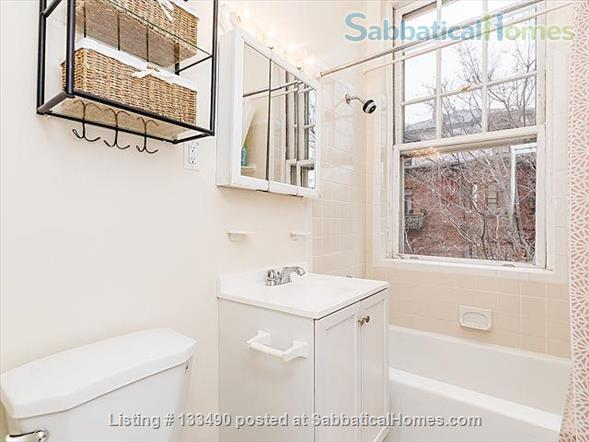 Furnished two-bedroom condo in prime location one block from Harvard campus Home Rental in Cambridge, Massachusetts, United States 7