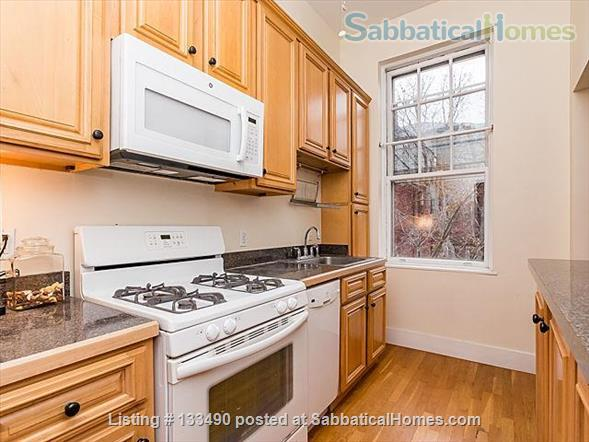 Furnished two-bedroom condo in prime location one block from Harvard campus Home Rental in Cambridge, Massachusetts, United States 0