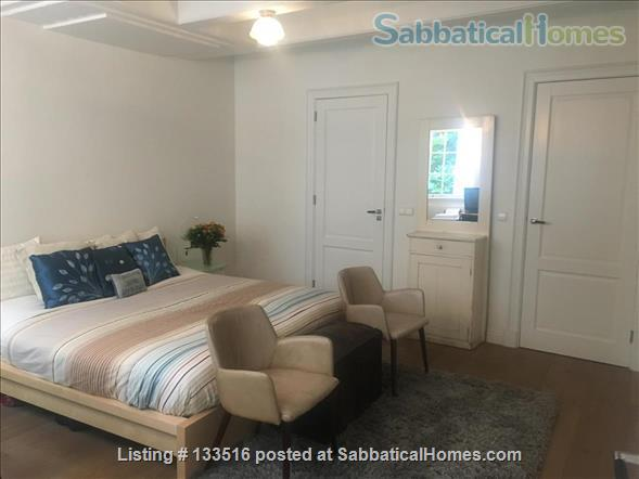 Charming and historic canal house in central Amsterdam Home Rental in Amsterdam, NH, Netherlands 4