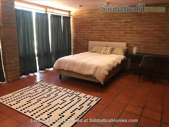 Foothills home surrounded by desert wildlife Home Rental in Tucson, Arizona, United States 6