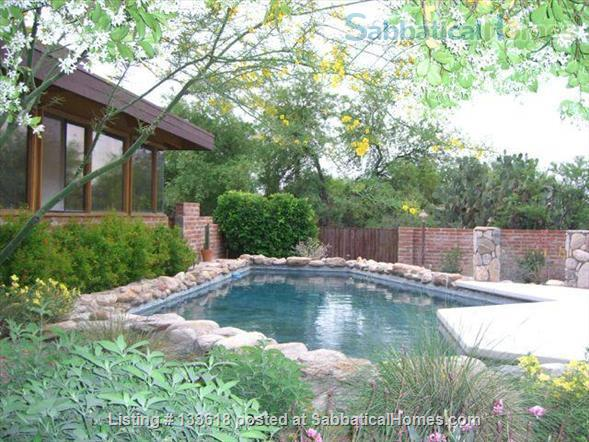 Foothills home surrounded by desert wildlife Home Rental in Tucson, Arizona, United States 7