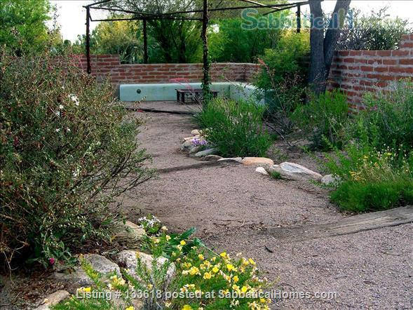 Foothills home surrounded by desert wildlife Home Rental in Tucson, Arizona, United States 8