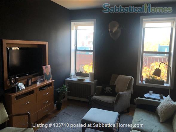 1-Bedroom, Light-Filled East Village Gem Home Rental in New York, New York, United States 3