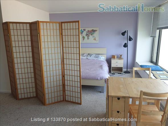 Furnished Apt. with Stunning Lake View and Close to Public Transportation Home Rental in Chicago, Illinois, United States 0
