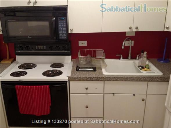 Furnished Apt. with Stunning Lake View and Close to Public Transportation Home Rental in Chicago, Illinois, United States 4