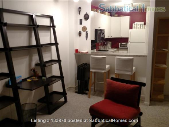 Furnished Apt. with Stunning Lake View and Close to Public Transportation Home Rental in Chicago, Illinois, United States 5