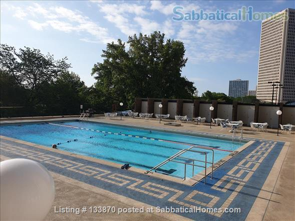 Furnished Apt. with Stunning Lake View and Close to Public Transportation Home Rental in Chicago, Illinois, United States 6