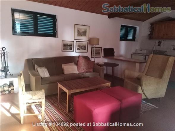 apartment in old farmhouse  in the countryside close to Porto-Portugal  Home Rental in Paredes, Porto, Portugal 4