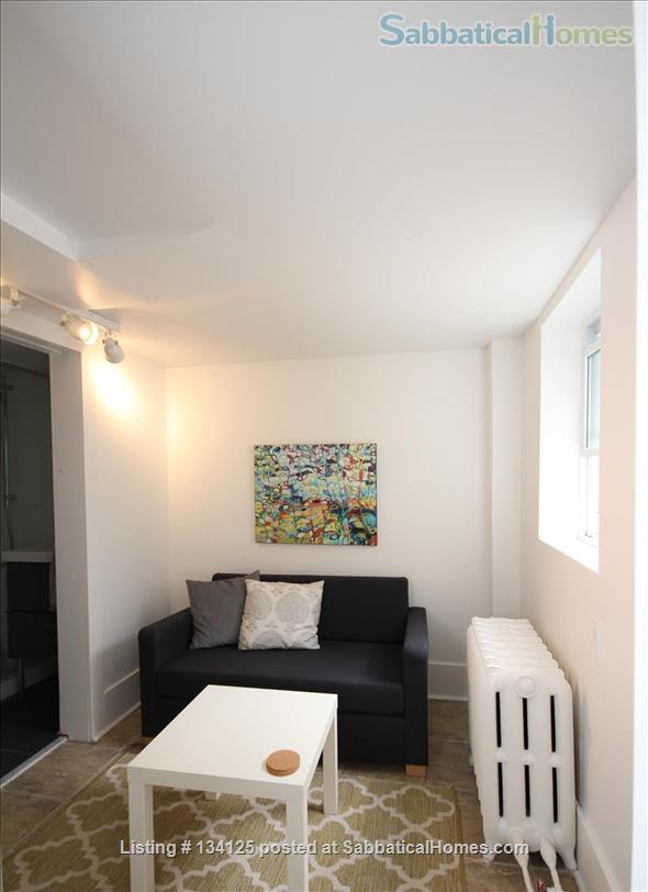 Sunny and Central One Bedroom Apartment- Minutes to Bloor Street Home Rental in Toronto 0