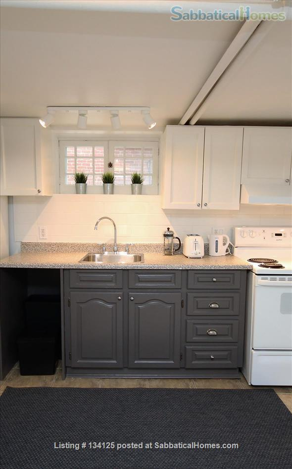 Sunny and Central One Bedroom Apartment- Minutes to Bloor Street Home Rental in Toronto 3