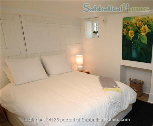 Sunny and Central One Bedroom Apartment- Minutes to Bloor Street Home Rental in Toronto 5