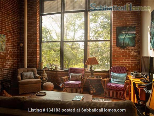 1 Bedroom Loft for Exchange in Italy and Sitting Sweet Cat Home Exchange in Durham, North Carolina, United States 1