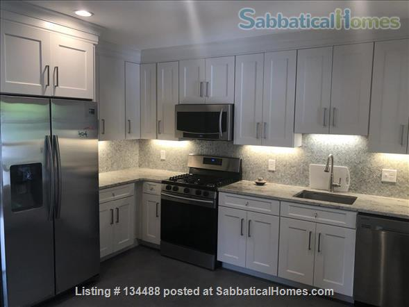 New fully renovated, 3 Bed, 2 Bath, AC, Washer/Dryer in unit, Patio in Unit Home Rental in Brookline, Massachusetts, United States 0