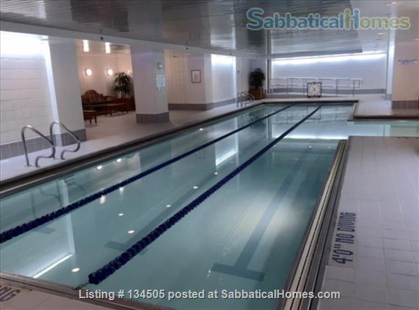 Esplanade (3 bed Apt. in Cambridge by the river) Home Rental in Cambridge, Massachusetts, United States 3
