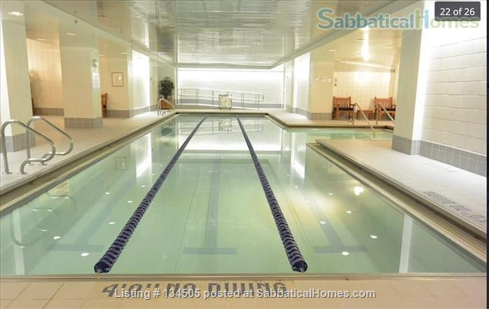 Esplanade (3 bed Apt. in Cambridge by the river) Home Rental in Cambridge, Massachusetts, United States 9