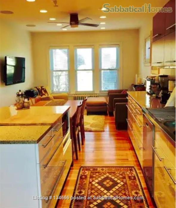 Expansive Apartment in Great Location Home Rental in Evanston, Illinois, United States 0