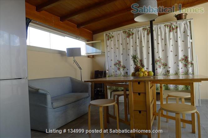 MONTE VERDE VECCHIO FURNISHED LOFT WITH PRIVAT TERRACE  SURROUNDED   by a lovely  garden Home Rental in Roma, Lazio, Italy 6