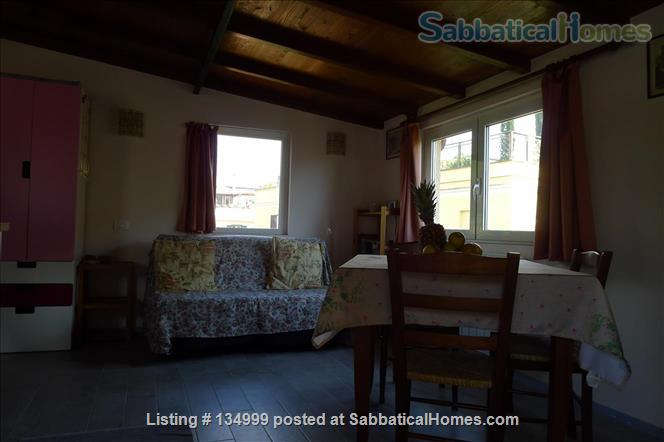 MONTE VERDE VECCHIO FURNISHED LOFT WITH PRIVAT TERRACE  SURROUNDED   by a lovely  garden Home Rental in Roma, Lazio, Italy 7