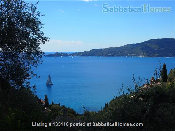 Quiet house with amazing view in the Italian Riviera Home Rental in Zoagli, Liguria, Italy 1