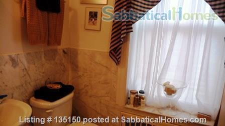 Beautiful  Sunny 2 Bedroom Duplex with 11 Windows and Washer/Dryer Home Rental in New York, New York, United States 4
