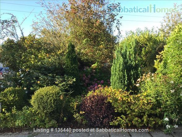 Rural coastal retreat south-east Ireland 80 minutes from Dublin Home Rental in Blackwater, County Wexford, Ireland 9