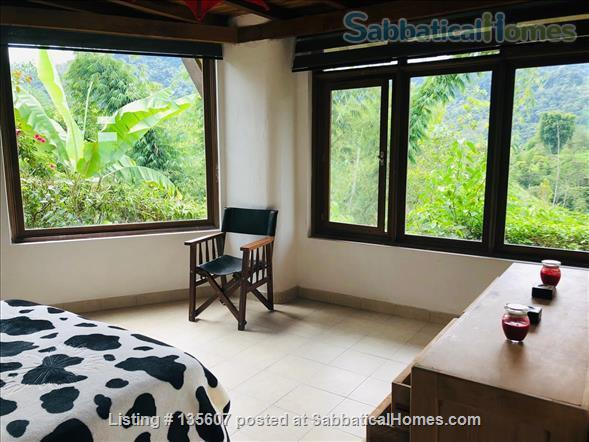 Elegant Home in Private Ecological Property Home Rental in Nanegalito, Pichincha, Ecuador 9