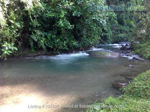 Elegant Home in Private Ecological Property Home Rental in Nanegalito, Pichincha, Ecuador 5