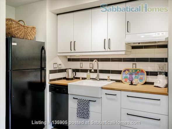 Peaceful 1 Bdrm. in-law apt. /newly remodeled + seismic & energy upgrades Home Rental in Kensington, California, United States 4