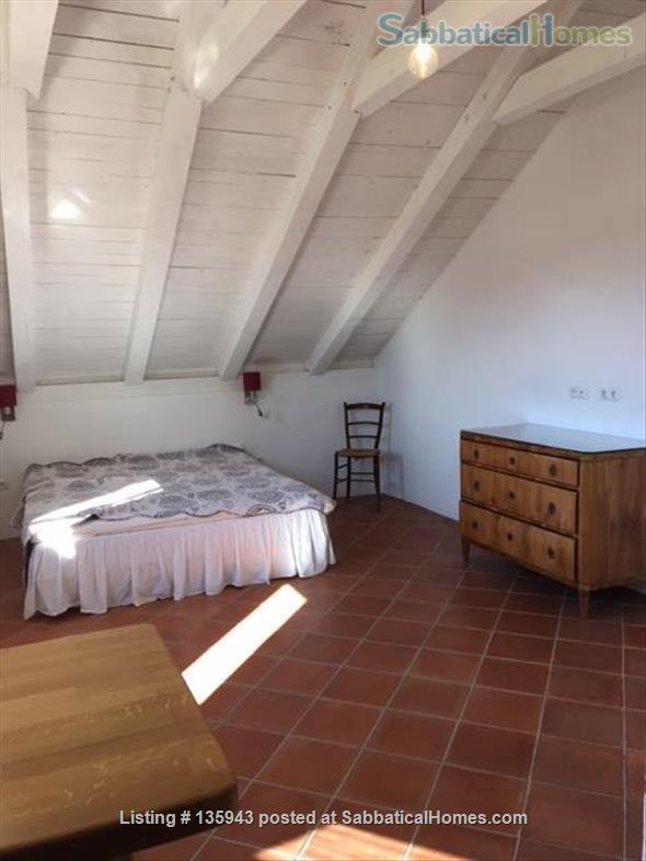 Island retreat Home Rental in Kolocep, Dubrovacko-neretvanska županija, Croatia 3