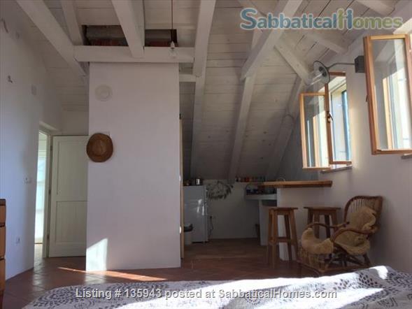 Island retreat Home Rental in Kolocep, Dubrovacko-neretvanska županija, Croatia 4