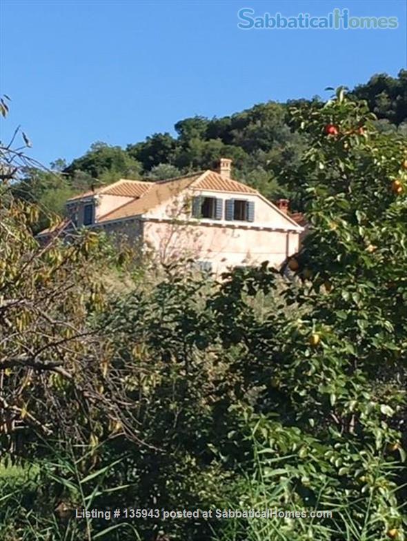 Island retreat Home Rental in Kolocep, Dubrovacko-neretvanska županija, Croatia 7