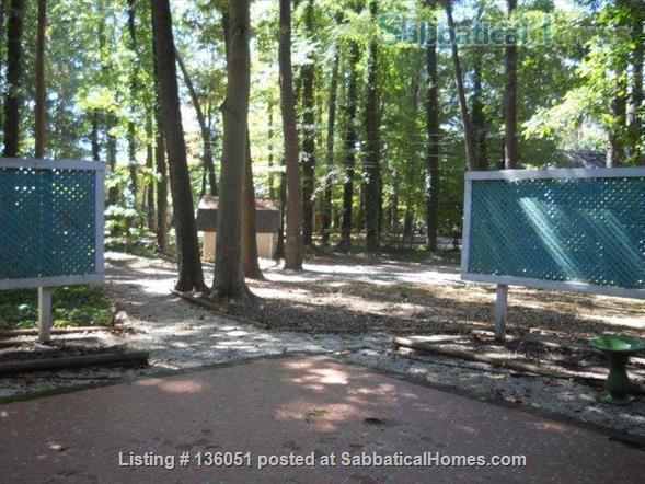 Location - location -  location! Home Rental in Chapel Hill, North Carolina, United States 8
