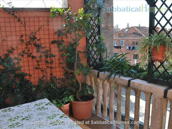 """""""La Zagara"""": wide and bright top-floor flat overlooking Venice's rooftops Home Rental in Venezia, Veneto, Italy 2"""