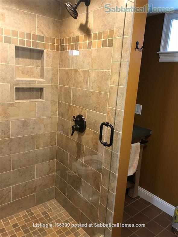 Basement 1 bedroom with lovely view and location Home Rental in Arlington, Massachusetts, United States 3