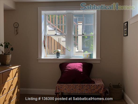 Basement 1 bedroom with lovely view and location Home Rental in Arlington, Massachusetts, United States 6