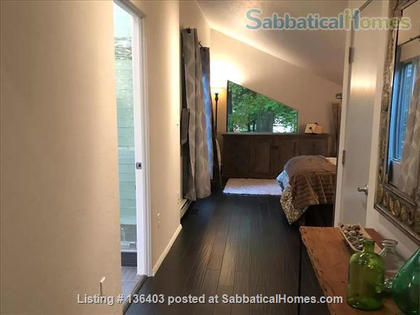 Stunning, Spacious, Sun-Drenched Modern Home. Walk to Campus. Home Rental in State College, Pennsylvania, United States 3