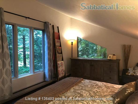 Stunning, Spacious, Sun-Drenched Modern Home. Walk to Campus. Home Rental in State College, Pennsylvania, United States 4