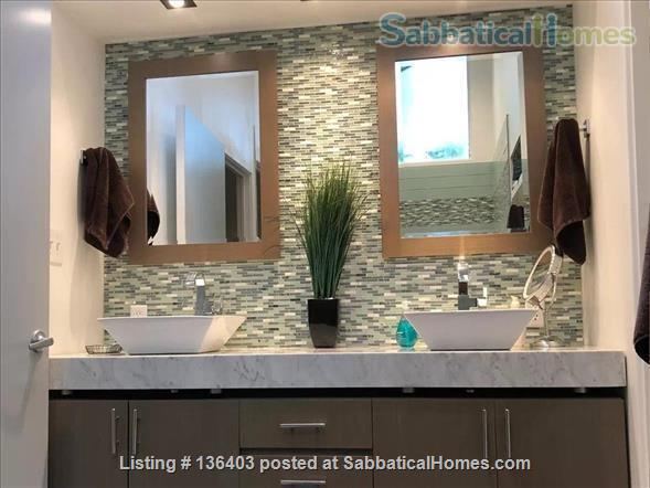 Stunning, Spacious, Sun-Drenched Modern Home. Walk to Campus. Home Rental in State College, Pennsylvania, United States 5