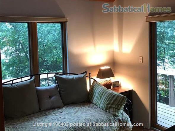 Stunning, Spacious, Sun-Drenched Modern Home. Walk to Campus. Home Rental in State College, Pennsylvania, United States 7