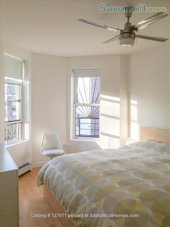 Beautiful Townhouse in Brooklyn Summer 2021 Home Rental in Prospect Lefferts Gardens, New York, United States 4