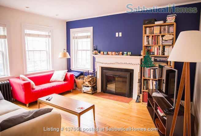 Beautiful furnished large 1br near Harvard Yard, 3 months or a longer term Home Rental in Cambridge, Massachusetts, United States 1