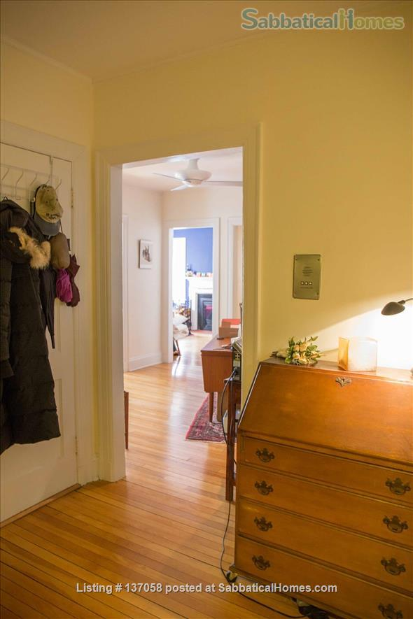 Beautiful furnished large 1br near Harvard Yard, 3 months or a longer term Home Rental in Cambridge, Massachusetts, United States 2